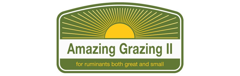 Amazing Grazing Cattle Events Header