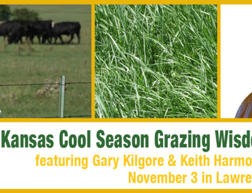 Extend Your Grazing with Cool Season Grass