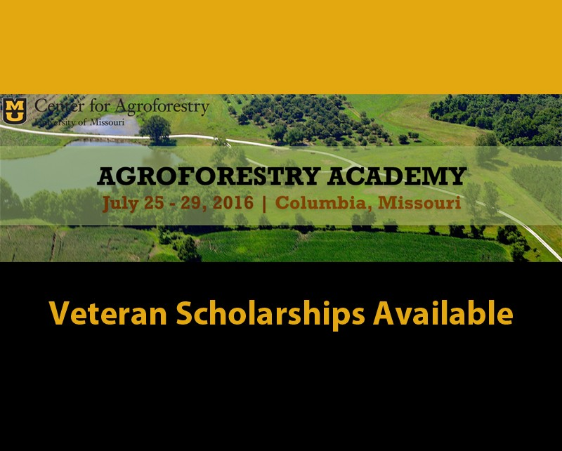 Agroforestry Academy