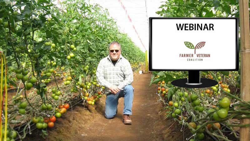 Growing your Farm with Michael O'Gorman