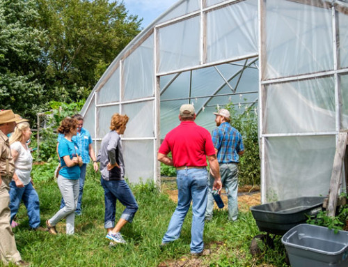 CRISIS DEFERRED: Urban farming and second-generation farm diversification promise new models for small farm success