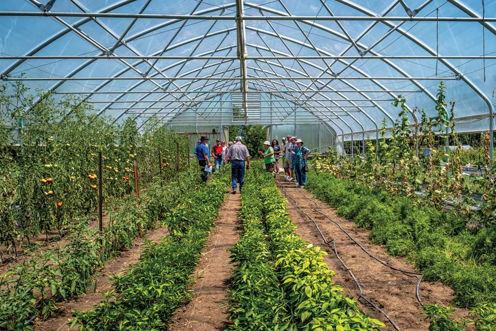 Outside the Box: Rolling Acres Farm